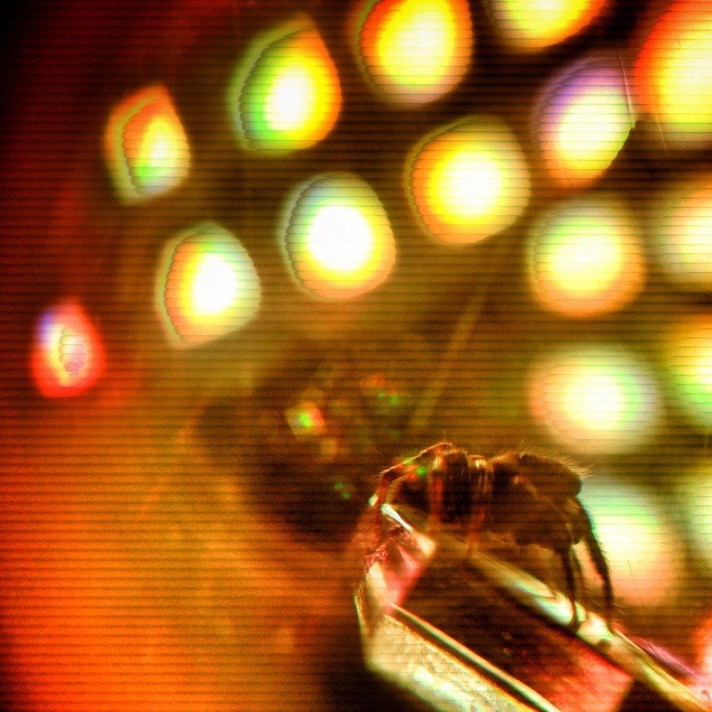 Superstar-Spider-IV.jpg